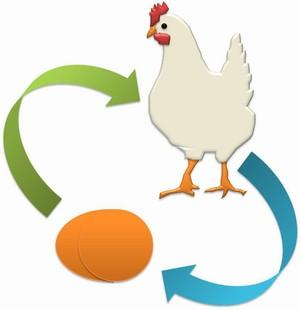 ayam-telur